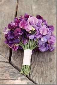 sweet pea bouquet. Luscious flowers in tin cans. More lusciousness at www.myLusciousLife.com
