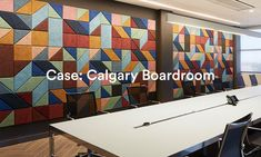 Acoustic Boardroom Case BAUX