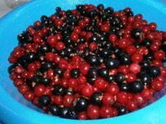 Džem z čiernych a červených ríbezlí (fotorecept)