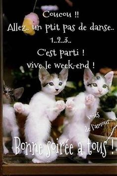 Photo: ✫Amitié et Tendresse ✫¸. Bon Weekend, French Quotes, Messages, Gifs, Facebook, Good Night Image, Love Pictures, Animation, Thinking About You