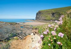"""HIGH CLIFF: at Crackington Haven, near Bude in North Cornwall. 'The highest point on the Cornish coast. Look out for the famous """"green flash"""" that occurs seconds before the sun sets.'     ✫ღ⊰n"""