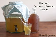 6 reasons why I love continuous kombucha brewing-The Nourishing Gourmet http://www.thenourishinggourmet.com/2013/04/6-reasons-i-love-continuous-kombucha-brewing.html