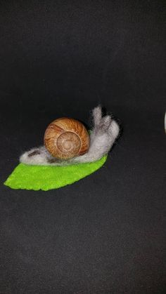 Check out this item in my Etsy shop https://www.etsy.com/uk/listing/586893779/large-snail-with-real-shell