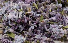 flieder_räucherwerk Magic Herbs, Wie Macht Man, Natural Energy, Larp, Wicca, Witchcraft, Incense, Celtic, Meditation