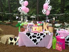 western cowgirl party supplies - Google Search