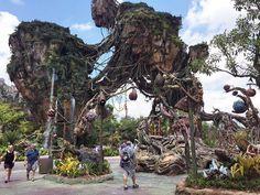 Disney's Pandora: The World of Avatar First Look Avatar Disney, Florida Theme Parks, Florida Travel, Sea World, Walt Disney World, Animal Kingdom, Pandora, Animals, Unique