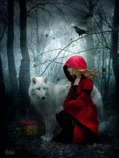 Little Red Riding Hood and the big bad wolf. Ari and Buck Halloween costumes! Fantasy World, Fantasy Art, Red Ridding Hood, Big Bad Wolf, Poster S, Red Hood, Art Graphique, Gothic Art, Little Red