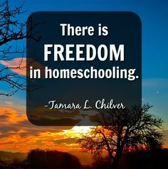 Image result for quote on homeschooling