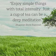 #meditationquotes #meditate #meditation #guidedmeditation #dailymeditation #sipandom