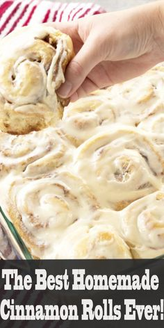 The Best Homemade Cinnamon Rolls Ever! bestcookers bestcookers The post The Best Homemade Cinnamon Rolls Ever! bestcookers bestcookers appeared first on Daisy Dessert. Brunch, Best Cinnamon Rolls, Pioneer Woman Cinnamon Rolls, Best Cinnamon Roll Recipe, Bread Machine Cinnamon Rolls, Sourdough Cinnamon Rolls, Cinnamon Loaf, Overnight Cinnamon Rolls, Cinnamon Roll Icing