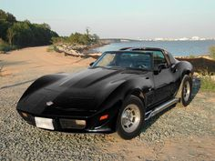 1978 Corvette - 25th Anniversary model. Mine was black on black with custom paint silver fade away on 1/2 bottom door panels, from front wheels to the beginning of the back wheels. I also had removable mirror glass T top.