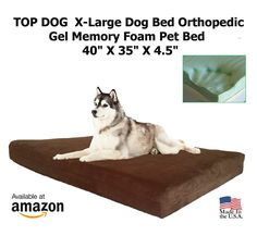 Pet Support Systems X-Large Washable Orthopedic Gel 4 lb. Memory Foam Pet Bed, 40' X 35' X 4.5', Chocolate Suede ** Check this awesome product by going to the link at the image. (This is an affiliate link and I receive a commission for the sales)