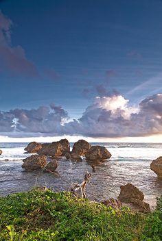 #Barbados