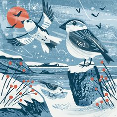 Snow buntings on a snowy Maenporth Beach. Winter bird illustration by Matt Johnson for Seasalt Cornwall printed scarf. Art And Illustration, Vogel Illustration, Illustrations, Cornwall, Winter Pictures, Buy Prints, Bird Art, Les Oeuvres, Cool Art
