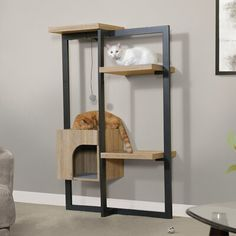 "Tucker Murphy™ Pet Here kitty kitty. Do your furry friend a favor by supplying endless hours of fun and lounging with this Range cat sky climber. This cat ladder sits tightly against the wall and secures for added safety precautions for your kitty. It has different levels for your cat to climb, jump, and perch keeping them occupied throughout the day. This cat perch also includes a pom-pom play toy on an elastic string for endless hours of fun and play. | Tucker Murphy™ Pet 59"" Furey Sky… Wooden Cat Tree, Wood Cat, Cat Tree Condo, Cat Condo, Cat Wall Shelves, Cat Climber, Cat Perch, Pet Furniture, Modern Cat Furniture"