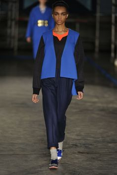 Roksanda Ilincic RTW Fall 2014 - Slideshow - Runway, Fashion Week, Fashion Shows, Reviews and Fashion Images - WWD.com