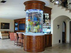 "Cylindrical, 460 gallon acrylic aquarium, 66"" Tall and 45"" in diameter, by Aquarium Design."