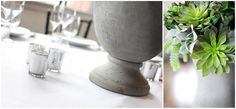@Keri Werlinich --have you thought about repotting some succulents? we have so many in the back yard, we could easily make 12 centerpieces by march