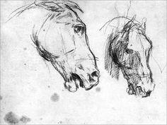 Horse Drawings, Realistic Drawings, Animal Drawings, Art Drawings, Horse Oil Painting, Watercolor Horse, Clown Paintings, Horse Paintings, Human Anatomy Drawing