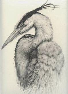 Vanessa Foley (graphite on paper)