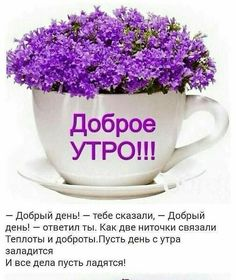 Good Morning Greetings, Good Morning Wishes, Coffee Time, Cake Decorating, Good Day, Cards, Live, Painting, Flowers