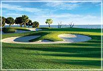 Palmetto Dunes Golf Hilton Head