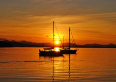 Sailboat, Instant, Fine Art, Digital, gift ocean download photo sunset island - pinned by pin4etsy.com Sunset and sailboats... what an amazing photo!! #etsymntt #epiconetsy #picsher #etsyaaa #turtlesandpeace #etsyseller #etsyshop @Etsy #ocean #sailing #sailboats #outdoors #nature #gift #art #love #colorful #sunset