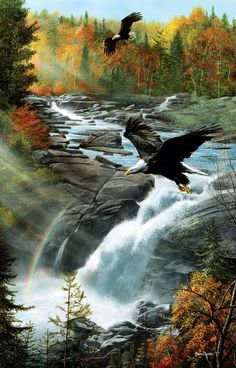 "Eagles at the Waterfall - 1000 Pieces! Finished size 19"" x 30"". Artist: Kevin Daniels.         Sunsout puzzles are 100% made in the USA      Eco-friendly soy-based inks      Recycled boards      Not sold in mass-market stores"