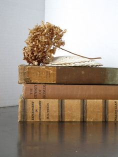 Vintage book decor biege brown  toupe by justynamrugala on Etsy, $29.00