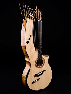 Greenfield Guitars  Albeit pretty weird looking, it is an amazing instrument.