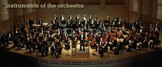 Welcome to the Orchestra!   -All about the sections in the orchestra, individual instruments and basic facts.  -Instrument unit