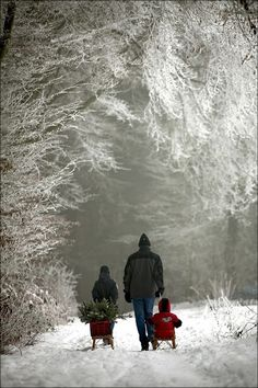 Dad and his children have completed their mission after the ice storm that coats the tree branches. They return on the snowy road through the silence of the winter wonderland -- no sound except snow crunching under boots. Winter Szenen, I Love Winter, Winter Magic, Winter Time, Winter Christmas, Christmas Tree, Winter Walk, Christmas Christmas, Winter Night