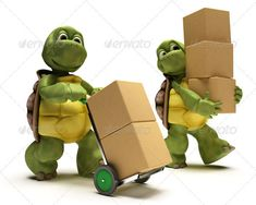 Turtles Carrying Boxes