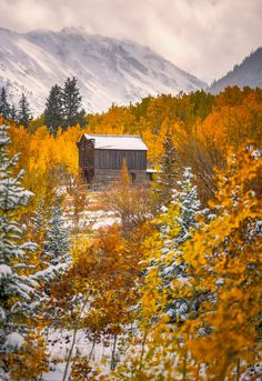 early snow - Ashcroft, Colorado  ( by Toby Harriman )