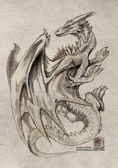 Realistic Dragon Drawing, Art Sketches, Art Drawings, Chromatic Dragon, Sepia Color, Dragon Sketch, Japanese Dragon Tattoos, Dragon Artwork, White Dragon