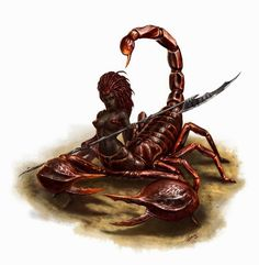 man Scorpion D&D - Pesquisa Google