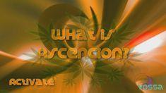 What is Ascencion   Activate