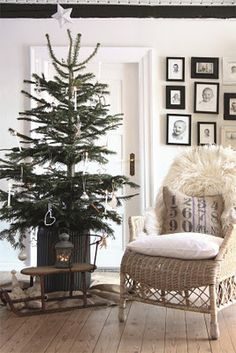 Bucket tree. Get a live tree and plant it in the spring after christmas.