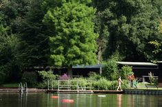 Hampstead Ponds