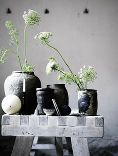 black pots, one white flower by pot