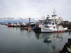 commercial+fishing | Commercial Fishing Boats