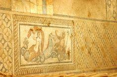 Mosaic in the Terrace Houses in Ephesus