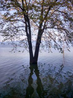Dojran Lake Republic Of Macedonia