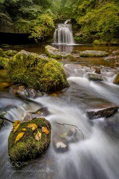 Autumn - West Burton North Yorkshire UK. by DanielKay. Please Like http://fb.me/go4photos and Follow @go4fotos Thank You. :-)