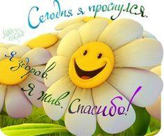 счастье картинки: 25 тыс изображений найдено в Яндекс.Картинках