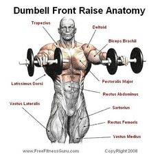 Dumbbell front raise