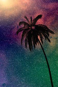 Palm Tree Wallpaper Its Lit Asf Bruhh Wallpaper For Your Phone, Tree Wallpaper, Cellphone Wallpaper, Galaxy Wallpaper, Cool Wallpaper, Mobile Wallpaper, Pattern Wallpaper, Iphone Wallpaper, Cute Backgrounds