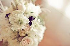 Elegant Garden Shabby Chic Spring Summer Vineyard Vintage Ivory Pink White Bouquet Wedding Flowers Photos & Pictures - WeddingWire.com
