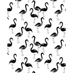 Flamingo modern watercolor girly cute black and white cell phone case... ($16) ❤ liked on Polyvore featuring accessories and tech accessories