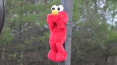 Watch a Jet Engine Completely Disintegrate a Tickle-Me-Elmo   Maxim